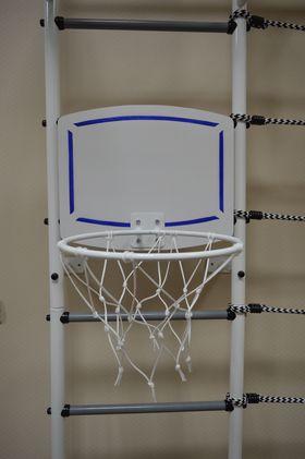 Кольцо баскетбольное со щитом (Пионер) белый в категории Спортинвентарь для ДСК